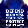 On May 14, 2018, the Diné elders of Black Mesa and Big Mountain are calling resisters from near and far to converge at Black Mesa! On that day, they […]